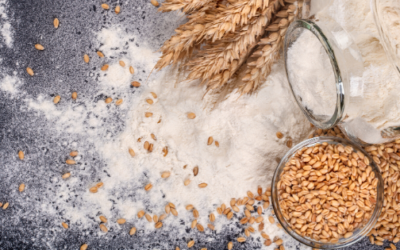Resistant Starches, Grains & Your Health